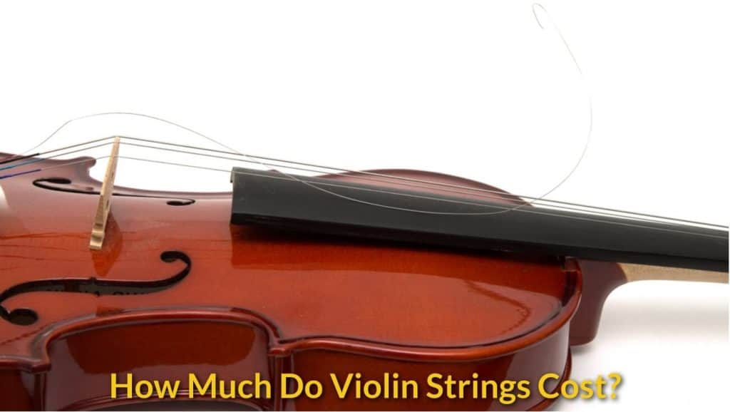 how much do violin strings cost musicalhow com. Black Bedroom Furniture Sets. Home Design Ideas