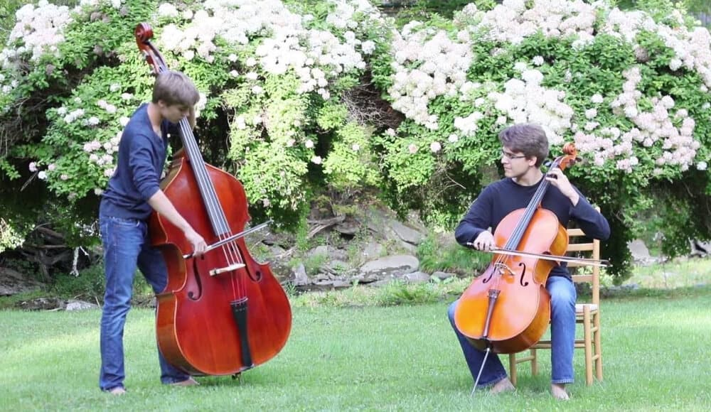 Comparing Double bass and cello.