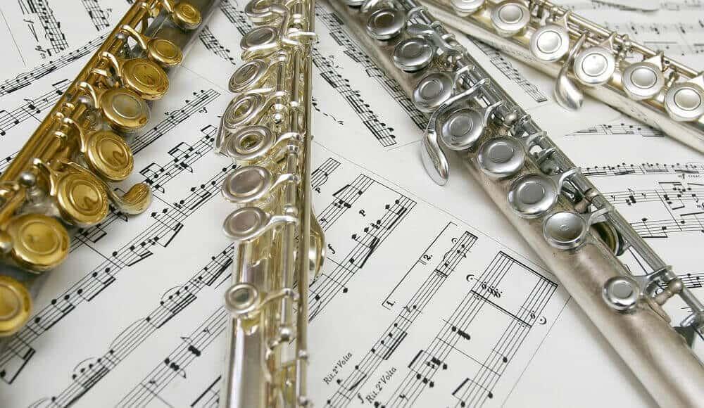 Flute models and brands.