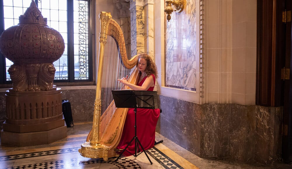 Musician playing the high-end premium harp.