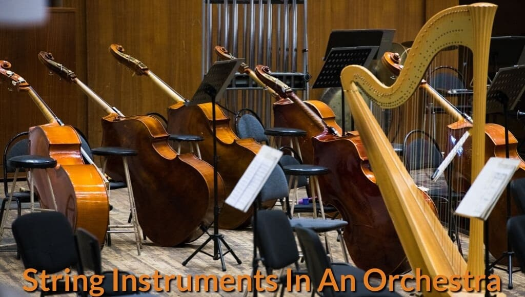 Panels of double bass and harp displays on the Orchestral stage.