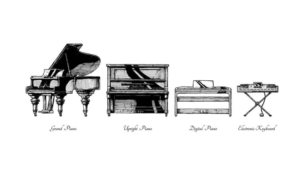 Various types and models of piano.