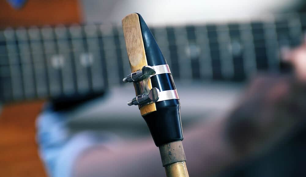 Saxophone mouthpiece reed.