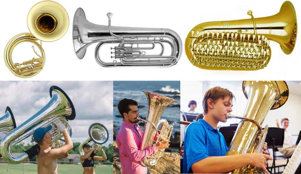 Different types and groups of tuba instrument.