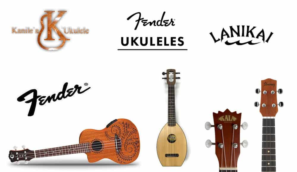 Different top quality ukulele brands.