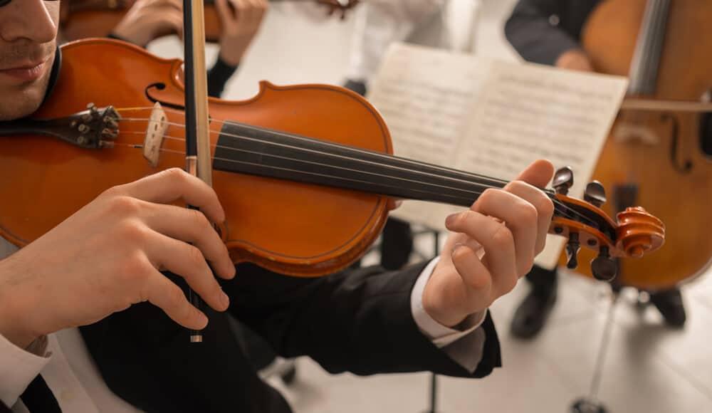 Strings of the violin.